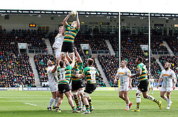 Jamie Gibson of Northampton Saints catches the ball from the line out - Mandatory by-line: Robbie Stephenson/JMP - 27/03/2016 - RUGBY - Franklin's Gardens - Northampton, England - Northampton Saints v Harlequins - Aviva Premiership
