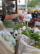 Zack Kerr (left), ISU farm intern at Grinnell Heritage Farm, makes a sale at the Downtown Farmers' Market in Cedar Rapids on Saturday morning, June 2, 2012. There were 244 vendors who participated in the first market of the year. (Stephen Mally/Freelance)