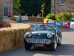 Boness Revival hillclimb motorsport event in Boness, Scotland, UK. The 2019 Bo'ness Revival Classic and Hillclimb, Scotland's first purpose-built motorsport venue, it marked 60 years since double Formula 1 World Champion Jim Clark competed here.  It took place Saturday 31 August and Sunday 1 September 2019. 82 Tom Purves Triumph Tr3A