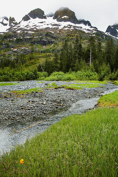 Mountains, grass, and stream, Prince William Sound, AK