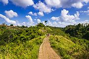 The Campuhan Ridge Walk, Ubud, Bali, Indonesia