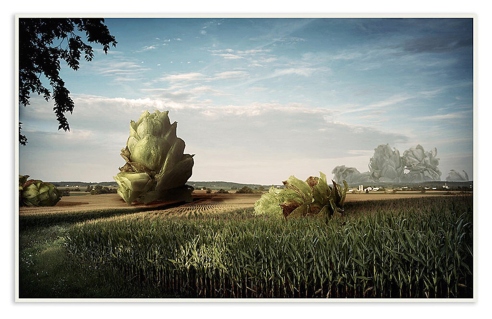 """""""Hop Crisis"""" Surreal Photography, a blend of several photos. The beer hops are from my brother's hop farm and photographed in my home studio. The corn field was photographed on a Jeep ride."""