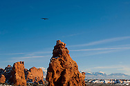 The Windows, Arches National Park, Utah, winter, raven.