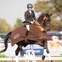 Elementary Restricted - 2014 British Dressage National Championships
