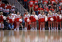 03 December 2016:  Redbird cheerleaders during an NCAA  mens basketball game between the New Mexico Lobos the Illinois State Redbirds in a non-conference game at Redbird Arena, Normal IL