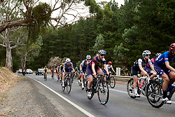 Hannah Ludwig (GER) in the bunch on Stage 1 of 2020 Santos Women's Tour Down Under, a 116.3 km road race from Hahndorf to Macclesfield, Australia on January 16, 2020. Photo by Sean Robinson/velofocus.com