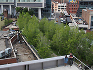 The Highline park, seen from the Whitney Museum of American Art.