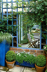 Mirror set into trellis by shady seating area. Box balls in terracotta pots and grass in tall ceramic glazed container