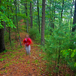 A hiker on a woodland trail in Medfield, Massachusetts.