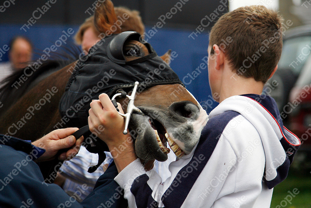 Maniac was losing patience at the strand racing in Kilkee on Sunday.<br />