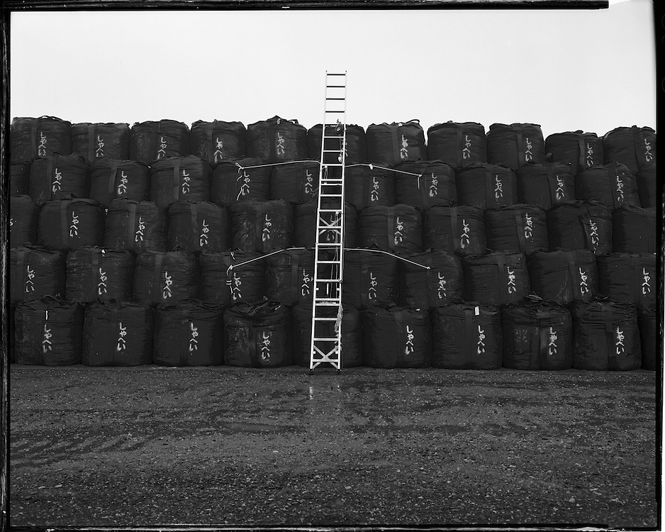 Thousands of Bags of nuclear waste collected from  the exclusion  zone in Fukushima, Each bag contains 1 cubic meter of contaminated soil or other waste. the bags at this site are stored in a temporary storage field of more then 20 hectares (25 acres) more then twice the size of the average Japanese farm.