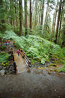 Sol Duc Falls Trail, Sol Duc River, Olympic National Park, WA