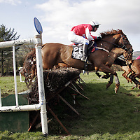 M. Fiannery on Lausanne Lass had no problem popping this fence at the Killaloe point to point last Saturday.<br /> <br /> Photograph by Yvonne Vaughan.