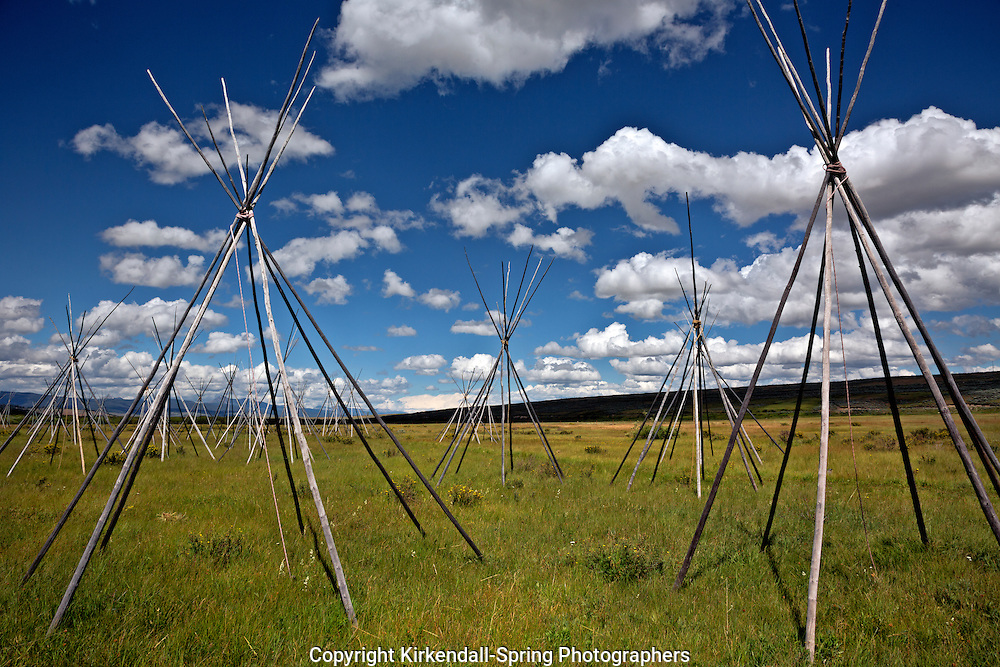 MT00076-00...MONTANA - Ghost teepees, poles standing to mark the location of where people were sleeping the night of the slaughter at the Big Hole National Battlefield.