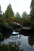 Kubota Gardens features several curved Japanese bridges, pools and waterfalls. (Greg Gilbert / The Seattle Times)