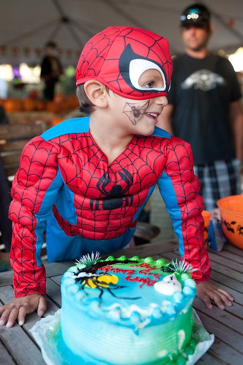 boy in Spiderman costume with Spiderman birthday cake