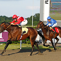 Willie Wag Tail and George Baker winning the 7.40 race