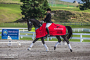2018-04-19 Elite Equine Young Dressage Horse (Thurs/Fri)