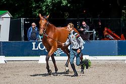 Devos Pieter, BEL, Claire Z<br /> Rotterdam - Europameisterschaft Dressur, Springen und Para-Dressur 2019<br /> Vet-Check Springen<br /> Horse Inspection Jumping horses<br /> 19. August 2019<br /> © www.sportfotos-lafrentz.de/Sharon Vandeput