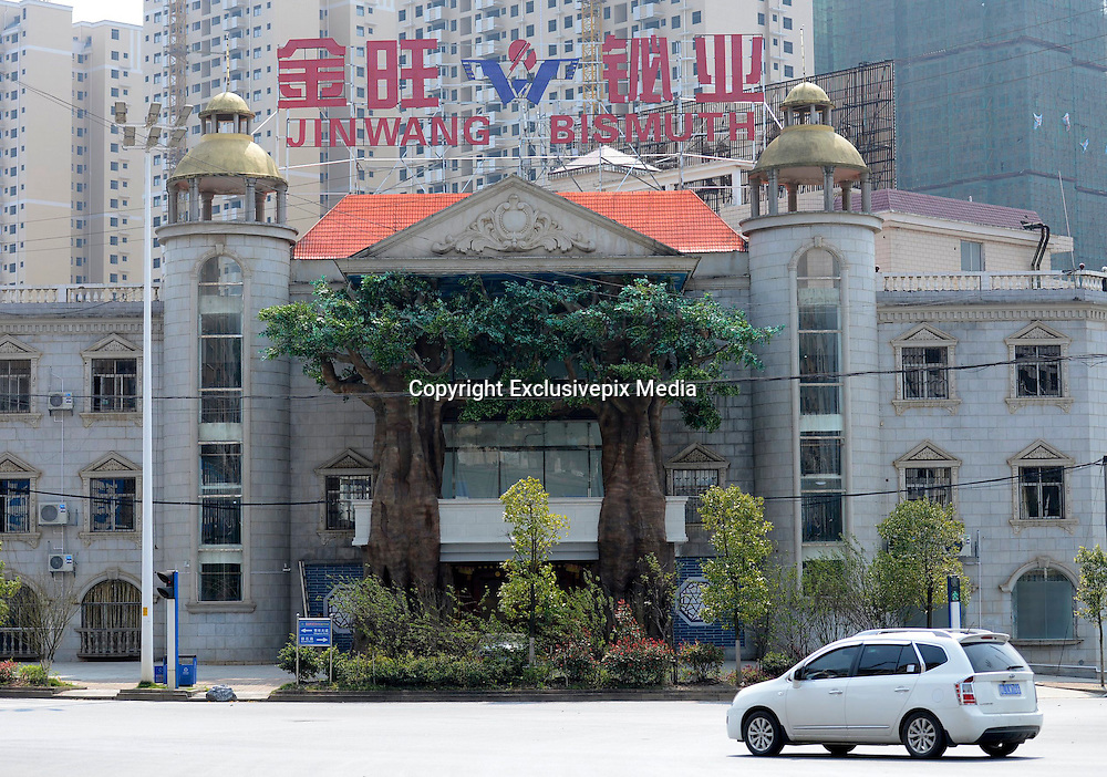 CHENZHOU, CHINA - MARCH 17: (CHINA OUT) <br /> <br /> Old Trees Stand At Two Sides Of Building<br /> <br /> Two old trees stand at two sides of an entrance of Jinwang Bismuth on March 17, 2015 in Chenzhou, Hunan province of China. The two trees are 15 metes high which mades the building look like a castle. <br /> ©Exclusivepix Media