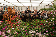 PRESS PHOTOGRAPHERS, Press and VIP viewing day. Chelsea Flower show, Royal Hospital Grounds. Chelsea. London. 18 May 2009