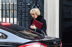 Downing Street, London, November 29th 2016. Environment, food and Rural Affairs Secretary Andrea Leadsom arrives at 10 Downing Street for the weekly meeting of the UK cabinet.