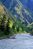 Middle Fork Salmon River in summer. Frank Church River of no Return Wilderness. Salmon-Challis National Forest, Idaho.