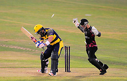 David Lloyd is bowled by Max Waller of Somerset.  - Mandatory by-line: Alex Davidson/JMP - 22/07/2016 - CRICKET - Th SSE Swalec Stadium - Cardiff, United Kingdom - Glamorgan v Somerset - NatWest T20 Blast