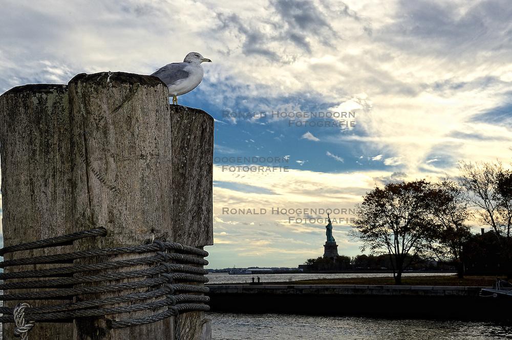01-01-2013 ALGEMEEN: BVDGF NY MARATHON: NEW YORK <br /> Opweg naar de south Ferry's voor een bezoek aan Ellis Island en Liberty Island is een klein onbewoond eiland in de Haven van New York en New Jersey gelegen in de monding van de Hudson River. Op het eiland staat het wereldberoemde Vrijheidsbeeld / NY item<br /> ©2013-WWW.FOTOHOOGENDOORN.NL