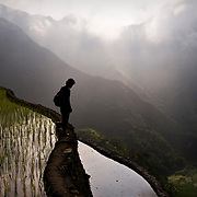 PHILIPPINES (Batad, Province of Ifugao). 2009. A boy looking at the rice terraces of Batad at dawn