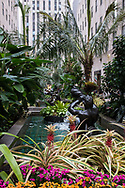 The Channel Gardens at Rockefeller Center