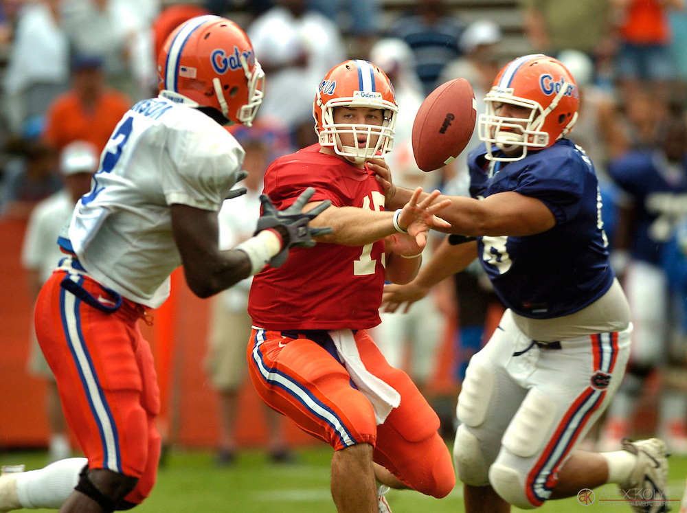 4/22/06-Alex Kolyer/for the Miami Herald-.Orange quarterback Tim Tebow, center, tosses the ball to Markus Manson, left, as the Blue's Javier Estopinan attempts a tackle at the Orange and Blue game Saturday, April 22, 2006. The Orange defeated the Blue 24-6 at Florida Field while an estimated 45,200 fans watched.