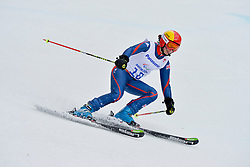 Millie Knight, Women's Giant Slalom at the 2014 Sochi Winter Paralympic Games, Russia