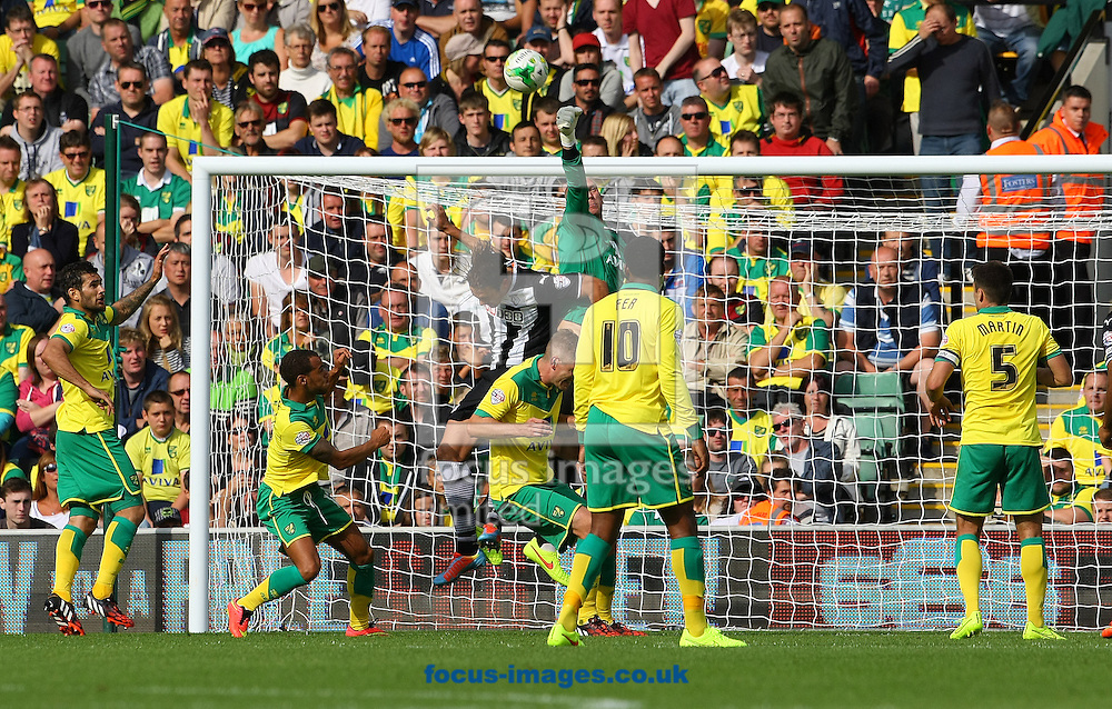 John Ruddy of Norwich punches clearl during the Sky Bet Championship match at Carrow Road, Norwich<br /> Picture by Paul Chesterton/Focus Images Ltd +44 7904 640267<br /> 16/08/2014