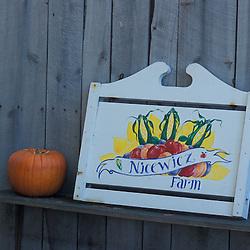 Bolton, MA.  USA.  The farm stand at the Nicewicz Farm in Massachusetts' Nashoba Valley. Pumpkin.