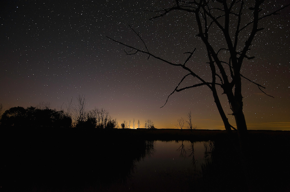 Hortobagy landscape with starnight, Hortobagy National Park, Hungary