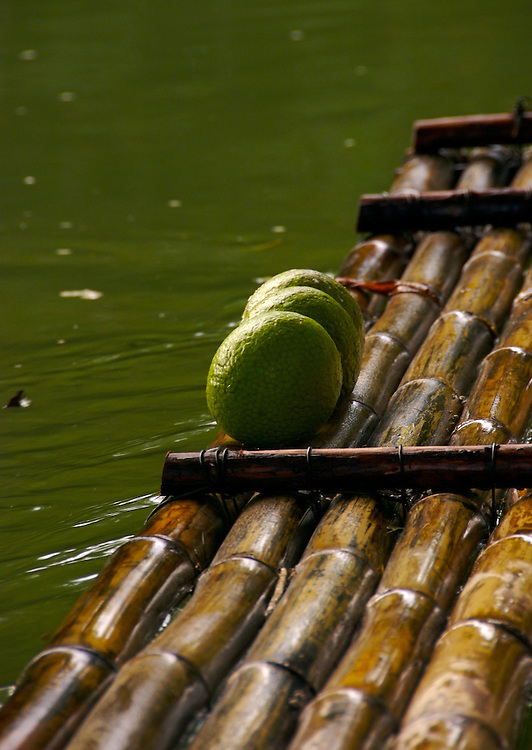 Detail of Tropical Fruits, over Bamboo Raft in Martha Rae, Jamaica