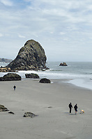 People walking on beach, Harris Beach State Park, Oregon