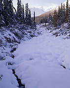 Rock Creek, Winter, Ice, snow, Denali, Denali National Park, National Park, Alaska, Alaska Range