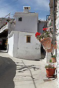 White houses with pots of geraniums, Mecinilla, Alpujarra, Andalucia, Southern Spain. Moorish influence is seen in the distinctive cubic architecture of the Sierra Nevada's Alpujarra region, reminiscent of Berber architecture in Morocco's Atlas Mountains. Photograph by Manuel Cohen.