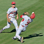 Arkansas shortstop Michael Barnel catches a ball hit by Mississippi's Preston Overbey during an NCAA college baseball game in Oxford, Miss., Saturday, May 3, 2014. (Photo/Thomas Graning)