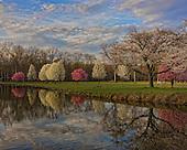 Cranford New Jersey