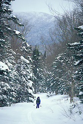 Rangely, ME. Backcountry skiing on Maine's Saddleback Mountain. Northern Forest.