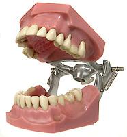 teeth open
