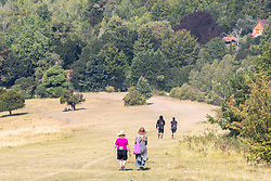 © Licensed to London News Pictures. 12/08/2020. Surrey, UK. Calm before the storms. As the heatwave continues to hit England with temperatures in excess of 34c, walkers take to the parched hilly paths on Box Hill in Surrey. Weather forecasters have predicted that thunderstorms with heavy rain are likely to hit Surrey and London later tonight with the Met Office issuing a yellow weather warning for thunderstorms in the South East with risk of flooding and travel disruption. Photo credit: Alex Lentati/LNP