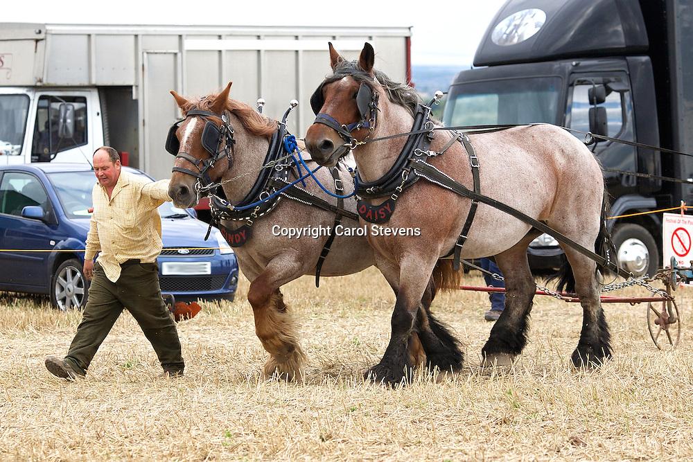 Festival of the Plough 2015  Epworth