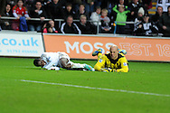 Swansea city's Nathan Dyer collides with Liverpool keeper Pepe Reina. Barclays Premier league, Swansea city v Liverpool at the Liberty Stadium in Swansea , South Wales on Sunday 25th November 2012. pic by Andrew Orchard, Andrew Orchard sports photography, 2 Old Vicarage close,