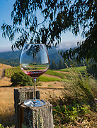 Peay Vineyards, Sonoma Coast