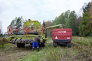 Nybyn tila, Espoo