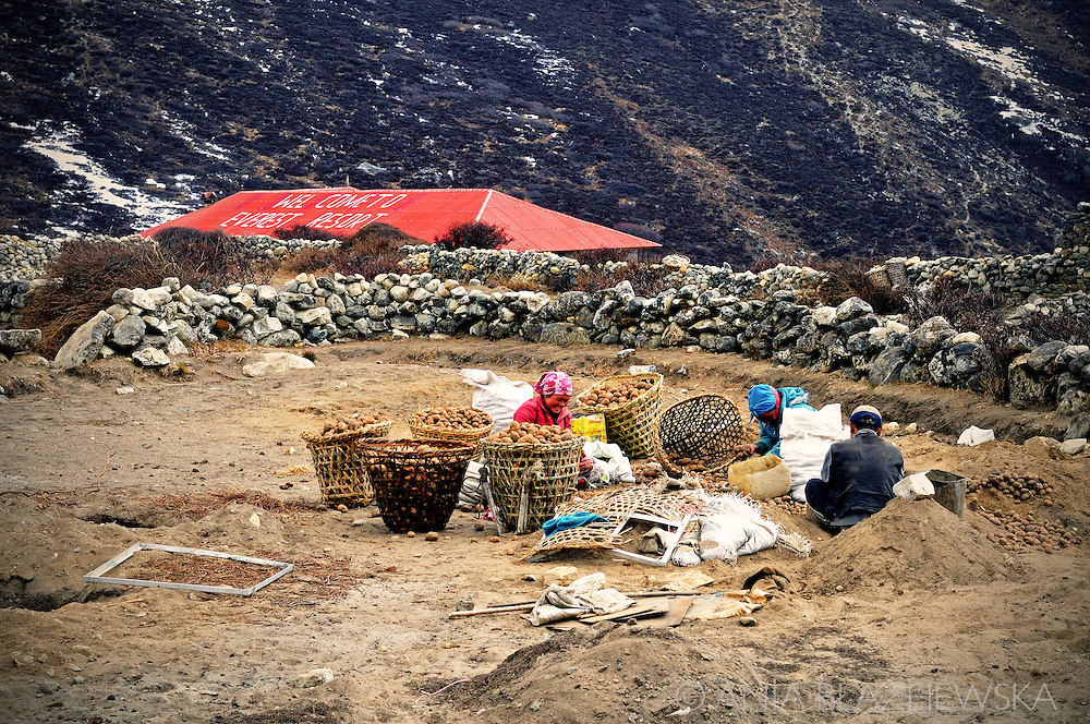 Nepal, Dingboche. People working in the village.